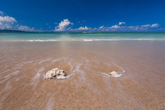 El mar agita la línea del latigazo en la playa de la arena Imágenes de archivo libres de regalías