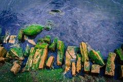 El mar azul con roto encima de fondo de la trayectoria Foto de archivo libre de regalías