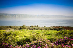 El mar de Galilee fotografía de archivo