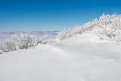 El mar de la niebla, paisaje en invierno fotografía de archivo libre de regalías