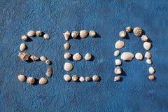 El mar de la palabra hecho de conchas marinas en cierre azul de la opinión superior del fondo para arriba, concepto de las vacaci foto de archivo