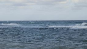 El mar del Caribe agita vacaciones tropicales almacen de video