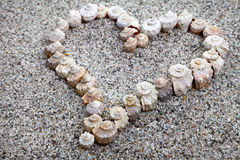 El mar descasca el corazón Fotografía de archivo libre de regalías