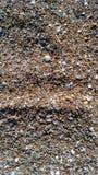 El mar descasca la playa cerca del mar Fotos de archivo libres de regalías