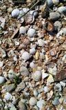 El mar descasca la playa cerca del mar Fotografía de archivo libre de regalías