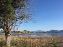 el mar oscila el lugar hermoso Jadran Opuzen del grada de la boca de la consideración de los árboles de la naturaleza fotografía de archivo