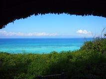 El mar resuelve la selva Imagenes de archivo