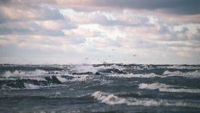 El mar tempestuoso en invierno con blanco agita el machacamiento - lo de la película del vintage fotografía de archivo