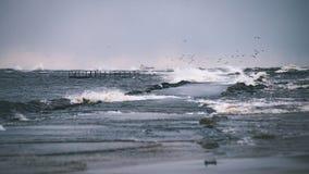 El mar tempestuoso en invierno con blanco agita el machacamiento - lo de la película del vintage imagenes de archivo