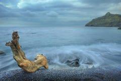 El mar y la madera de la noche Imágenes de archivo libres de regalías