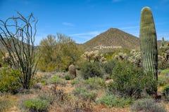 El marcador del aire de Phoenix fotografía de archivo libre de regalías