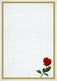 El marco de la tarjeta del día de San Valentín con subió Fotografía de archivo