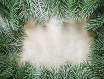 El marco de las ramas del árbol de navidad Fotografía de archivo libre de regalías