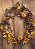 El marco decorativo del otoño con las setas, bellotas, calabazas, secó l Foto de archivo libre de regalías
