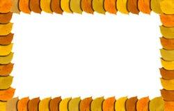 El marco del otoño con otoño coloreó las hojas en la frontera aislada en blanco Fotografía de archivo