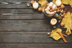El marco del otoño hecho de caída secada se va, taza de cacao con los marshmellows, nueces, canela, tela escocesa, manzanas Opini fotos de archivo