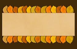 El marco del otoño y de la acción de gracias con otoño coloreó las hojas Fondo del tiempo de caída con el espacio de la copia par Fotografía de archivo