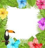 El marco exótico de la selva con el pájaro del tucán, hibisco colorido florece el flor Fotos de archivo