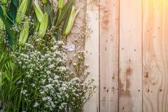 El marco floral hermoso con los lirios del valle florece en viejo Imágenes de archivo libres de regalías