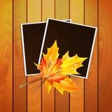 El marco para una foto adornó otoño Fotos de archivo libres de regalías
