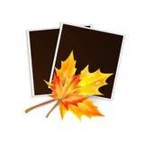 El marco para una foto adornó las hojas de arce del otoño Imagen de archivo libre de regalías