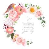 El marco redondo del vector floral elegante con el ranúnculo, peonía, subió, las plantas verdes y pequeño pájaro del petirrojo en ilustración del vector
