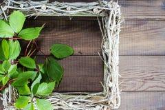 El marco vacío adornó las uvas salvajes Imágenes de archivo libres de regalías