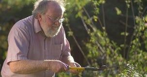 El mayor de abuelo que cultivaba un huerto retiró edad del retiro adulta madura mayor almacen de video