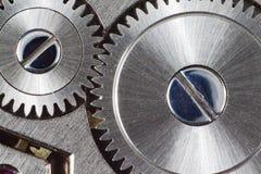 El mecanismo del reloj interno. Fotografía de archivo