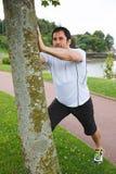 El mediados de hombre adulto que hace estirar ejercita usando un árbol Foto de archivo libre de regalías