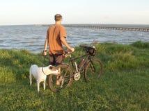 El mejor amigo del hombre y bici de montaña Imágenes de archivo libres de regalías