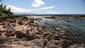 El mejor Oahu que bucea almacen de metraje de vídeo
