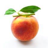 El melocotón aisló. fruta con las hojas del verde en blanco Imagen de archivo