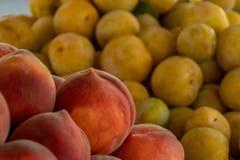 El mercado del granjero: Melocotones y Pluots de California Imagen de archivo