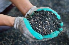 El mezclado del fertilizante químico y del abono de la planta en la mano del granjero