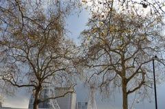 El milenio rueda adentro Londres durante la primavera foto de archivo