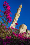 El Mina Masjid Mosque in Hurghada, Stock Photos