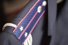El ministerio interior de las insignias del teniente de Ucrania Imagen de archivo