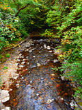 El mirar abajo The Creek Imagenes de archivo