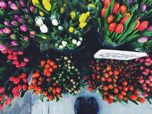 El mirar abajo los ramos coloridos del tulipán del corte para la venta Fotografía de archivo libre de regalías
