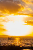 El mirar fijamente en el sol Fotografía de archivo
