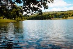 El mirar hacia fuera sobre el lago el parque Spruce azul Imagen de archivo