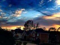 El mirar para arriba el cielo azul y las vides Imagen de archivo