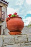 El mirar para arriba un pote redondo de la planta de la terracota con un crecimiento rojo del geranio imagenes de archivo