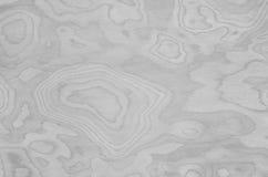 El modelo de madera abstracto superficial del primer en la pared de madera vieja texturizó el fondo en tono blanco y negro Imágenes de archivo libres de regalías