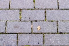 El modelo del bloque del ladrillo en la calzada, bloque del triángulo es diferencia, textura de los bloques del zigzag Foto de archivo