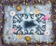 El modelo del invierno, conos, secó las rebanadas del limón, céfiros, bolas, tinse Fotos de archivo