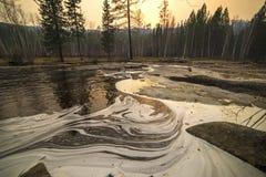 El modelo en el agua en el río en Siberia Foto de archivo libre de regalías