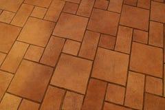 El modelo en el piso Foto de archivo libre de regalías