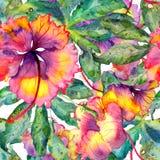 El modelo exótico dibujado mano de la acuarela inconsútil con las hojas y el hibisco de la pasionaria florece ilustración del vector